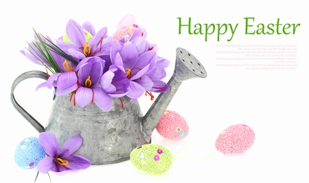 watering pot: Easter eggs and saffron flowers in a watering can