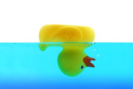 ahogarse: Pato ahogamiento en agua azul Foto de archivo