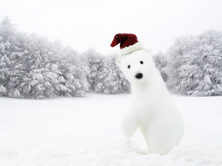 White bear with Santa hat in snowy field photo
