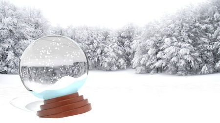 Christmas snow globe on snowy field  Stock Photo - 16403975