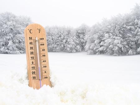 freddo: Termometro nella neve