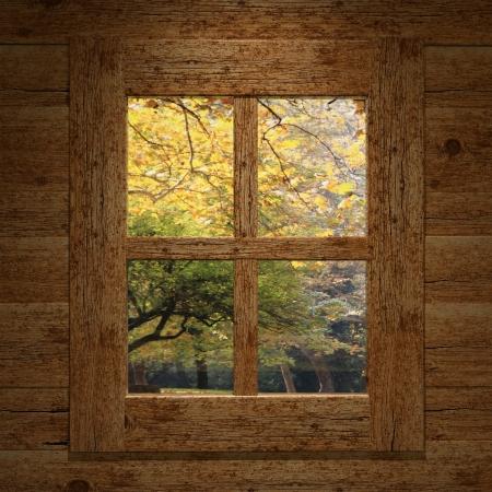 overlook: Wooden window overlook autumn trees