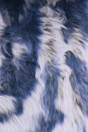 Close-up of fur background photo