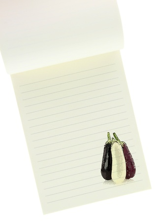 Recipe  book. Eggplants painting on blank notebook page photo