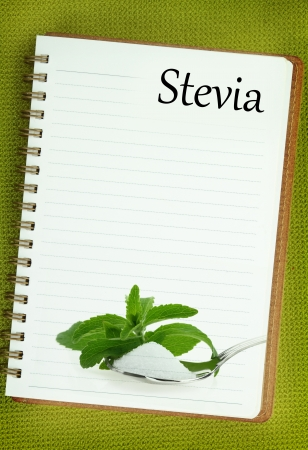 Fresh Stevia Rebaudiana and sugar on blank notebook page photo