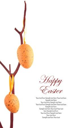 arbol de pascua: Los huevos de Pascua colgando de una rama
