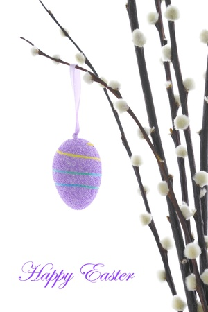 Easter eggs hanging on a pussy willow branch photo