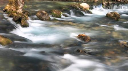 rill: Stream flowing over rocks