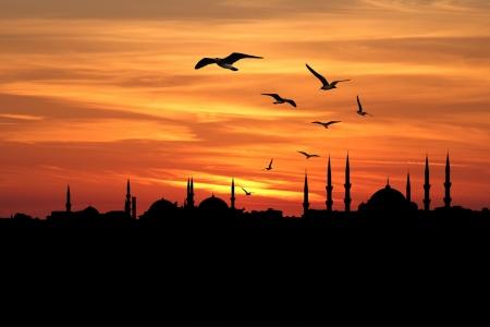 伊斯坦布尔市反对日落的剪影