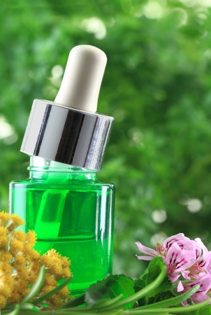 Natural herbs essential oil Stock Photo - 20457263