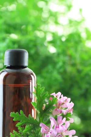 ginger flower plant: Bottle of Geranium essential oil