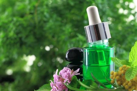 elixir: Las hierbas naturales aceites esenciales Foto de archivo