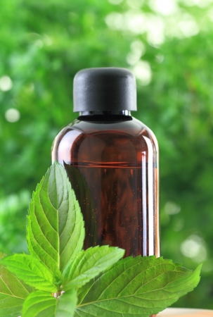 peppermint: Bottle of Peppermint essential oil  Stock Photo