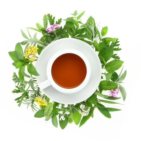 herbs white background: Cup of tea with fresh herbs and spices around it