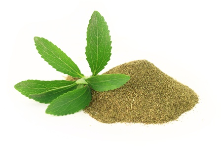 Fresh and dry Stevia Rebaudiana isolated on white background