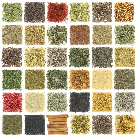 Large collection of herbs and spices isolated on white photo