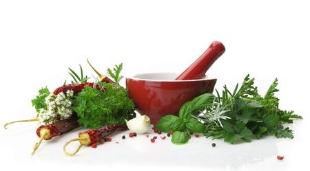 Mortero y maja de porcelana roja con hierbas frescas Foto de archivo