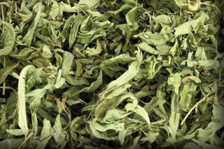 dried herb: Close up of dried lemon verbena