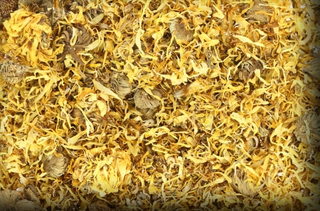 Close up of dried calendula photo