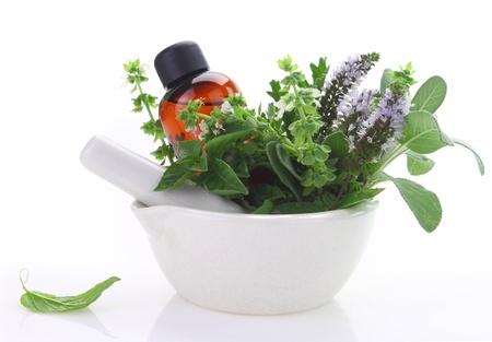 mortero: Mortero y maja con las hierbas frescas y una botella de aceite esencial Foto de archivo