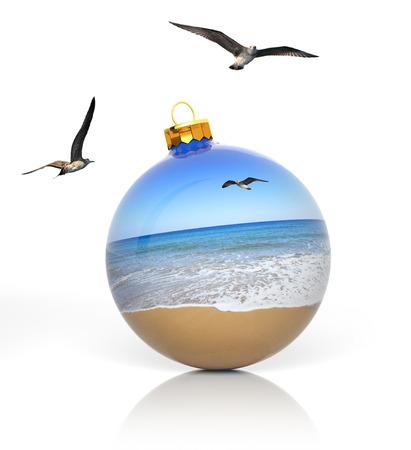 weihnachten zweig: Weihnachten am Strand