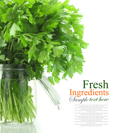 Bouquet of parsley in glass vase with water, isolated on white  photo