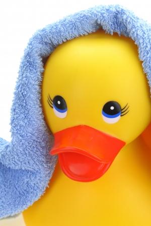 rubber  duck: Pato de goma amarillo con una toalla