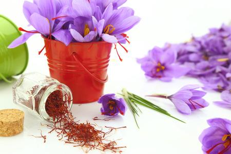 flores secas: Azafrán en polvo y flores de azafrán Foto de archivo