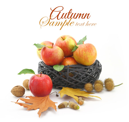 Autumn decorated basket with apples photo