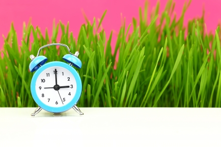 'Biological' clock concept, with grass and pink  photo