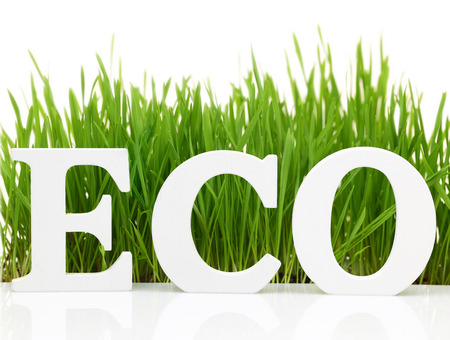 Word 'Eco' with fresh grass isolated on white photo