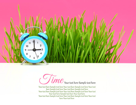 Biological clock concept, with grass and pink  photo