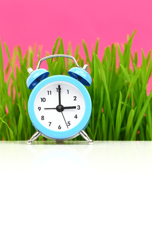 puberty: Clock with grass and pink , puberty concept Stock Photo