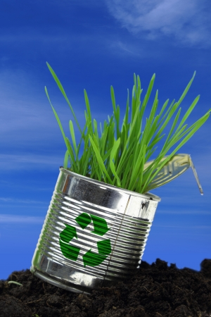 Can with growing grass on soil and blue sky photo