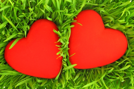 two hearts: Two red hearts on green grass  Stock Photo