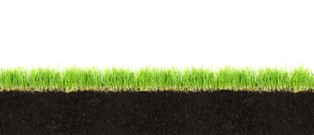 Cross-section of soil and grass isolated on white background  photo