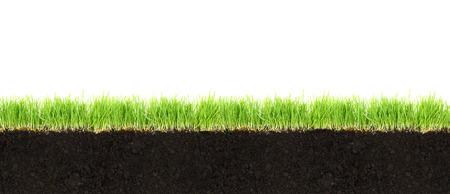 Section de terre et d'herbe isolé sur fond blanc Banque d'images - 25603112