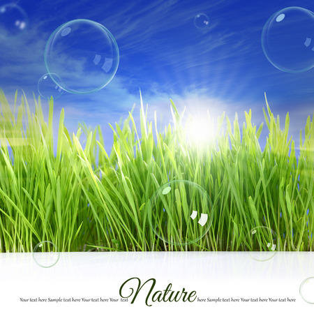 Happy background with grass, sky, sunlight and soap bubbles photo