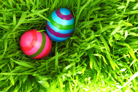 egg hunt: Colorful Easter eggs on fresh green grass