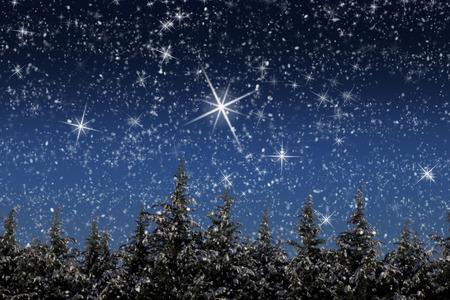 noche estrellada: Hermoso paisaje de invierno con los árboles nevados en la noche