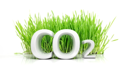 green footprint: Green grass with CO2 3D text ecological concept isolated