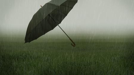 Foggy grassy field with heavy rain and flying umbrella photo