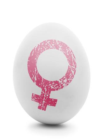 Biały jaj z różowym symbol kobiet samodzielnie na białym tle Zdjęcie Seryjne
