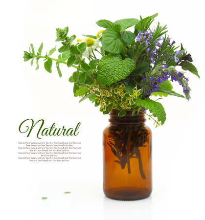 essential oil: Fresh herbs in a medical bottle Stock Photo