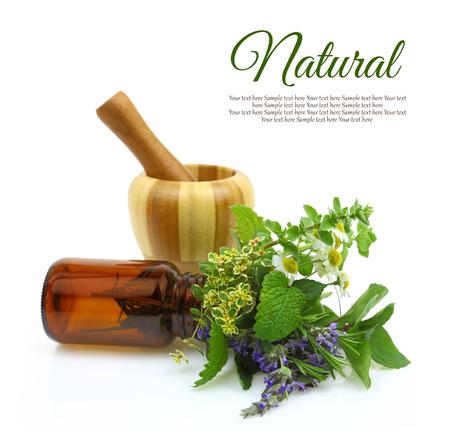 mortero: Mortero y majadero con hierbas frescas y una botella médica