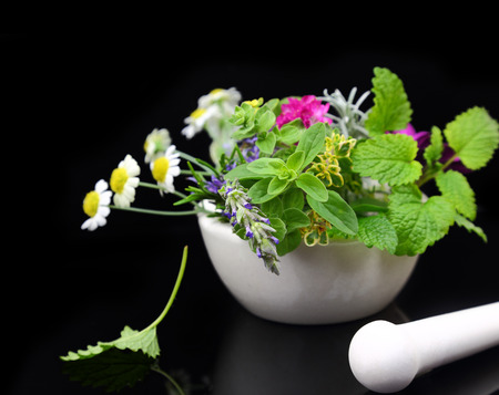White porcelain mortar and pestle with fresh herbs on black background photo