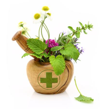 elixir: Mortero de madera con la cruz de la farmacia y hierbas frescas Foto de archivo