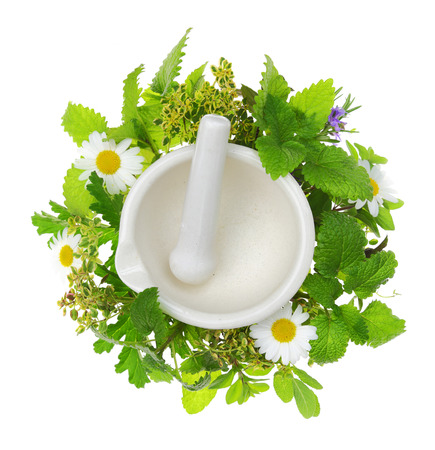 White porcelain mortar and pestle with fresh herbs around it photo