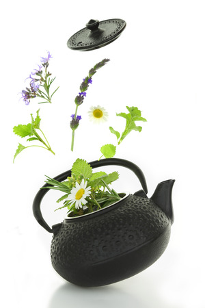 Teapot with bouquet of various herbs isolated on white photo