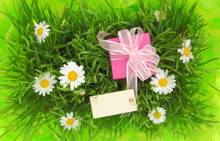 anniversary wishes: Gift box with blank tag on grassy background